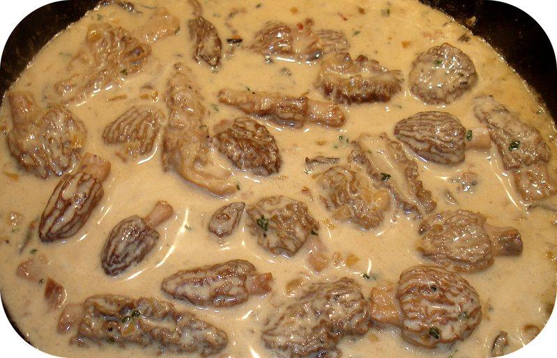 Sauce aux Morilles Une délicieuse sauce aux Champignons