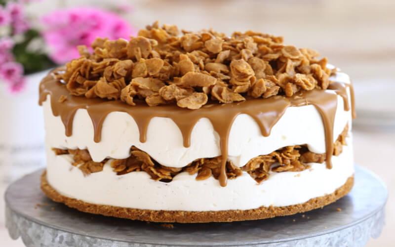 Gâteau glacé au mascarpone et spéculoos