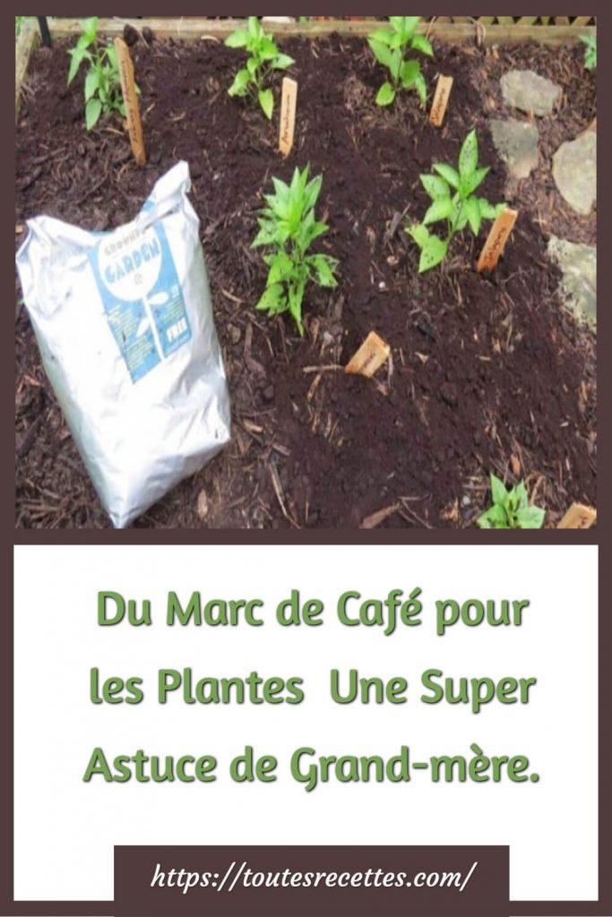 Astuce de Grand-mère jardinage Du Marc de Café pour les Plantes