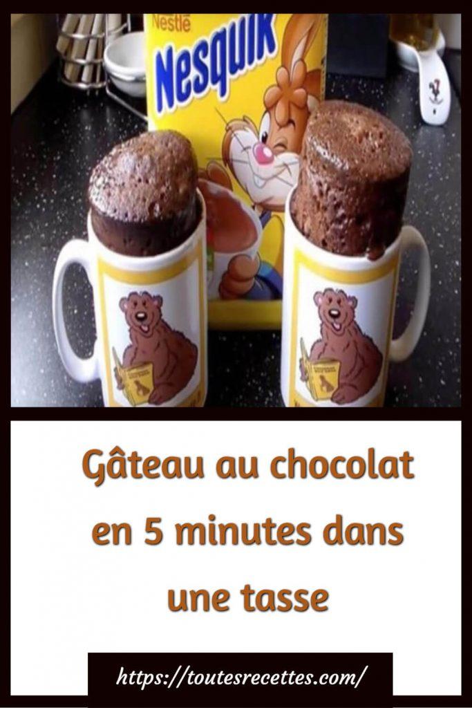 Comment préparer leGâteau au chocolat en 5 minutes dans une tasse