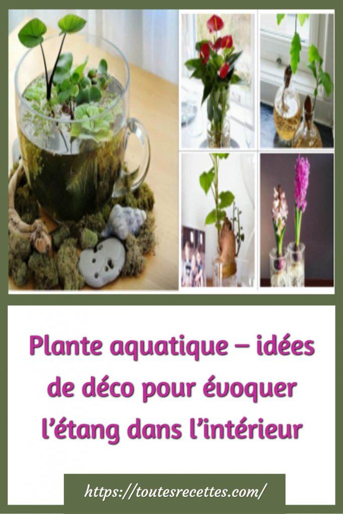 Plante aquatique – idées de déco pour évoquer l'étang dans l'intérieur