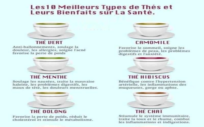 10 Meilleurs Types de Thé et Leurs Bienfaits sur la Santé