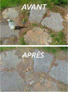 désherbant naturel maison très efficace pour tuer les mauvaises herbes