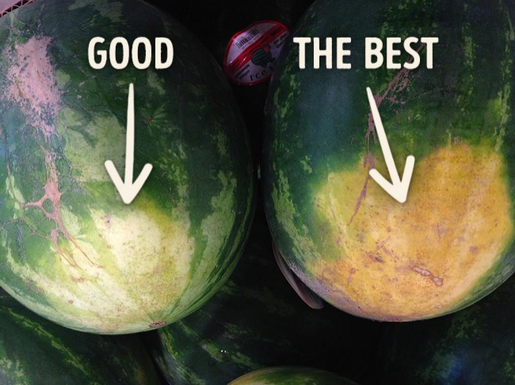 technique pour choisir un melon Cherchez la tache