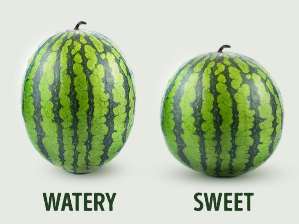 technique pour choisir un melon Trouvez le sexe du melon
