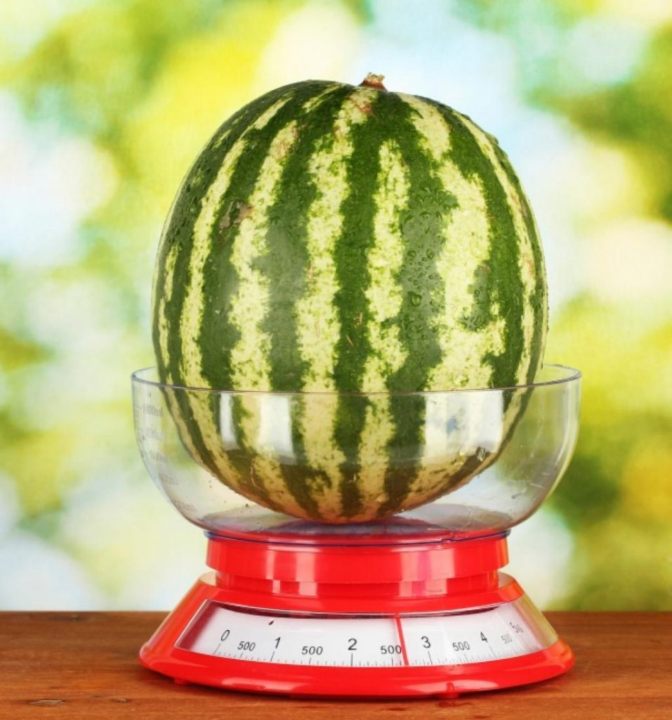 technique pour choisir un melon Faites attention à la taille