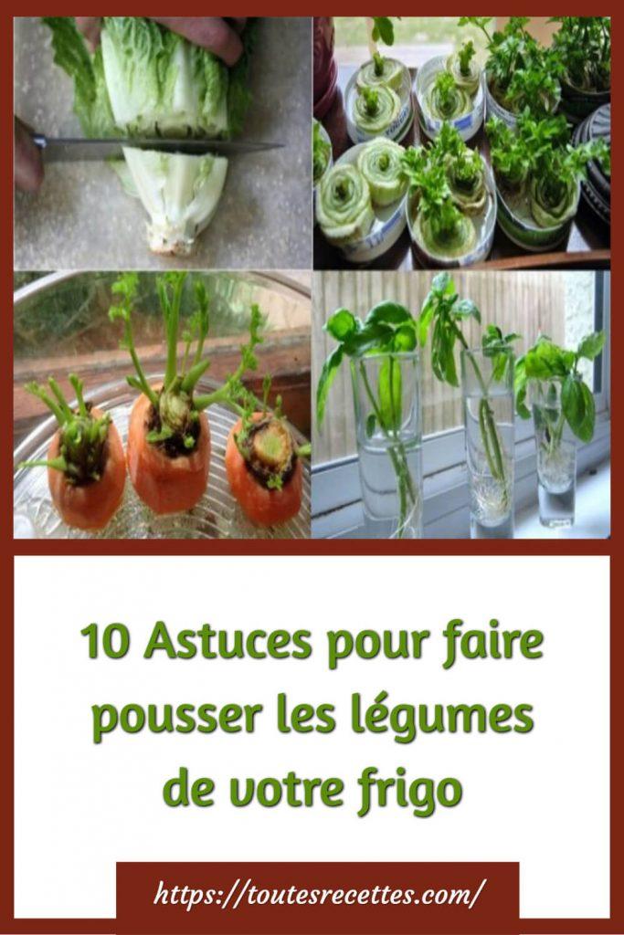 10 Astuces pour faire pousser les légumes de votre frigo