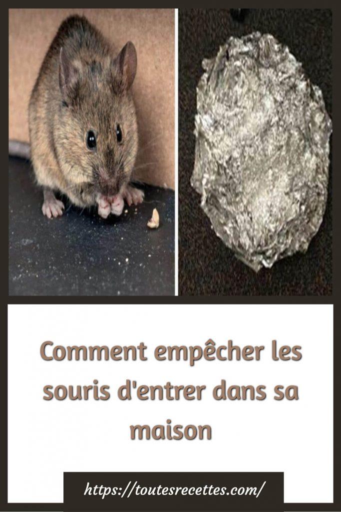 Comment empêcher les souris d'entrer dans sa maison