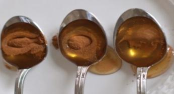 Miel cannelle deux ingrédients redoutablement efficace contre les maladies