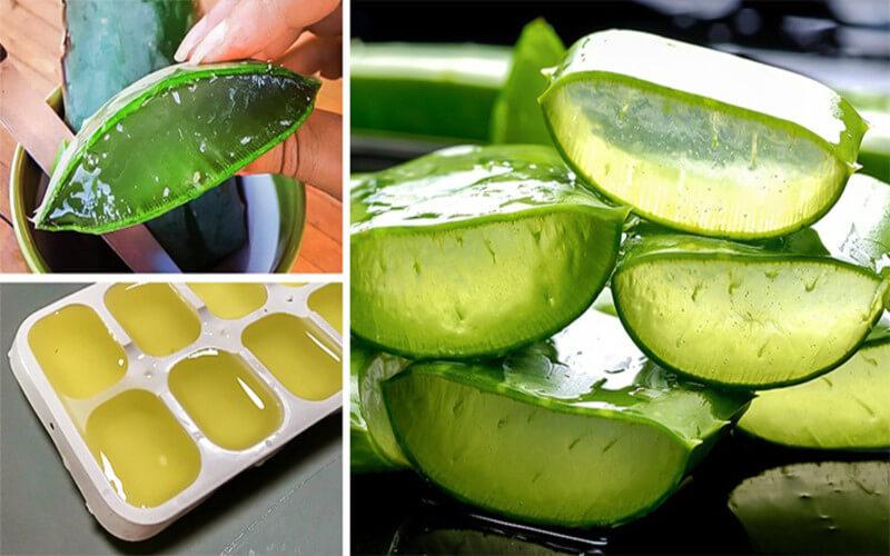 Voici Comment Couper Et Utiliser Le Gel D'une Feuille d'Aloe Vera