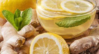 Infusion détox gingembre et citron nombreux avantages au corps